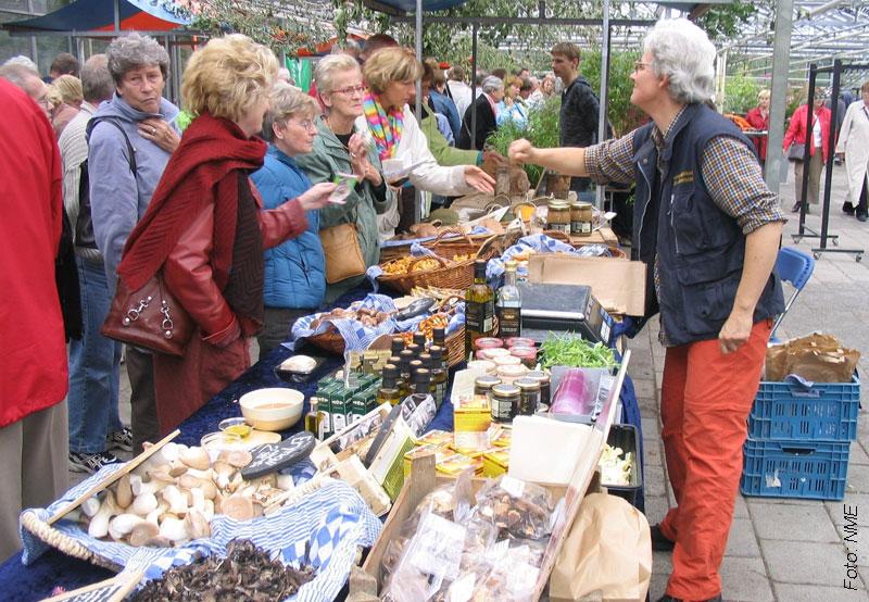 marktkraam-haarlem-kweektuin