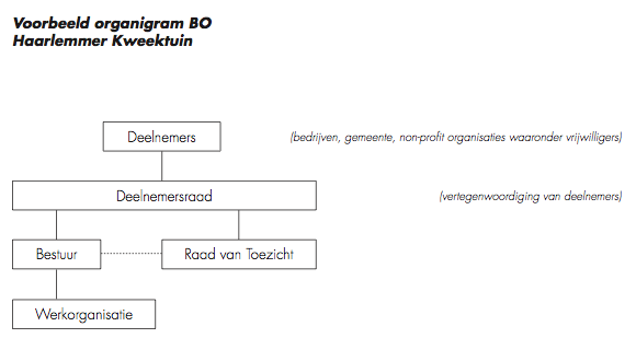 organigramboom-kweektuin-haarlem